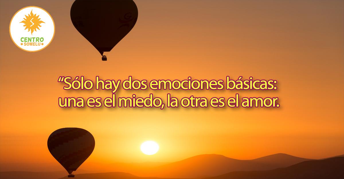 Sólo Hay Dos Emociones Básicas Una Es El Miedo La Otra Es